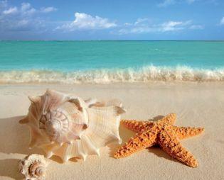 Moře pláže příroda